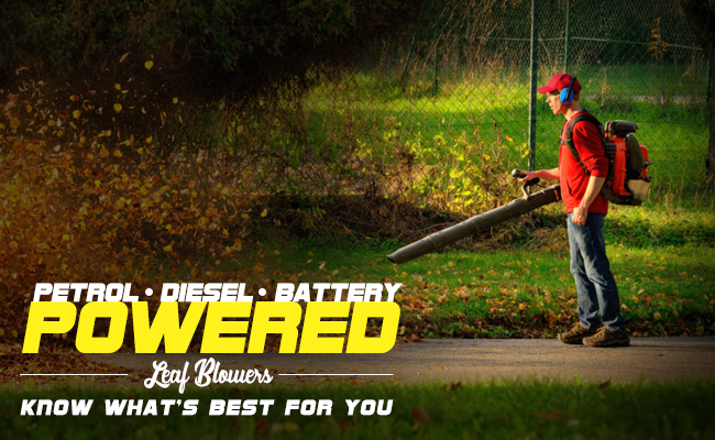 Petrol vs Diesel vs Battery Powered Leaf Blowers - Know What's Best For You